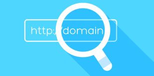 Domain Name Search Tool